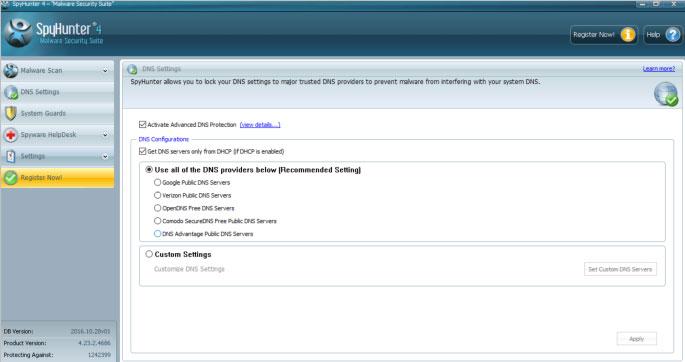 Spyhunter DNS setting interface
